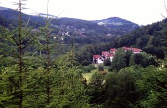 Regionalny Leśny Ośrodek Edukacji Ekologicznej